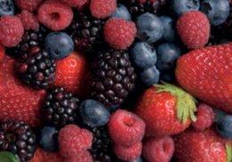 fruit-bushes
